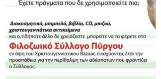enishyste_to_hristoygenniatiko_pazari_toy_filozoikoy_syllogoy_pyrgoy.jpg