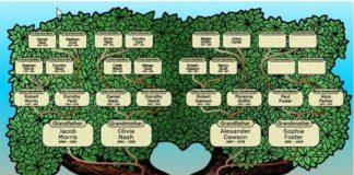 genealogiko.jpg