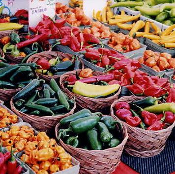 barrels_of_peppers.jpg