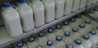 milkf-thumb-large.jpg