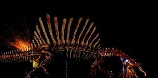 spinosauros.jpg
