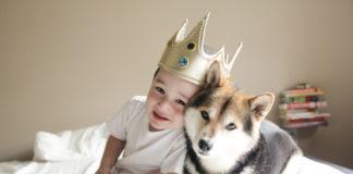 babydogy6.jpg