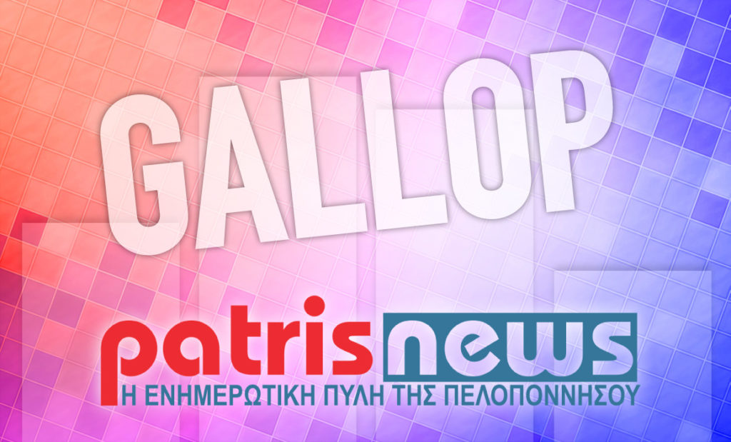 gallop_1.jpg