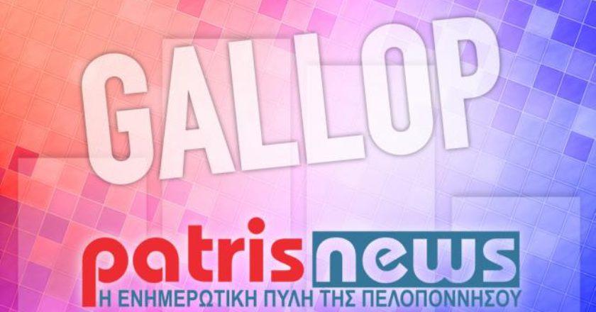 gallop_1_0.jpg