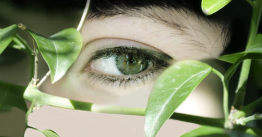 n-eyes-large570.jpg