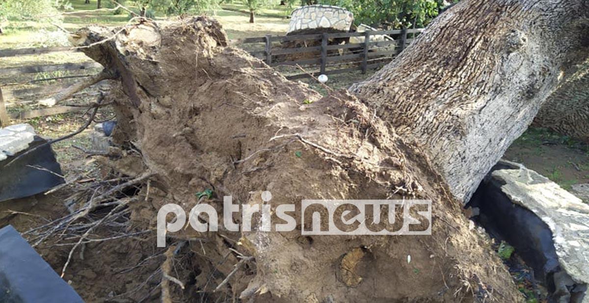 """Καταστράφηκε το σπίτι τους και έβαλαν όλοι οι φίλοι απο """"Ένα Χεράκι"""" για να το φτιάξουν![photos]"""