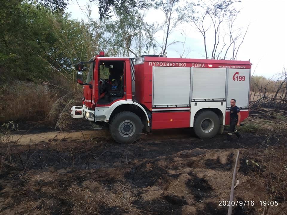 Ηλεία: Πυρκαγιά ξέσπασε το μεσημέρι, σε χορτολιβαδική έκταση σε περιοχή της Μανωλάδας (photos)