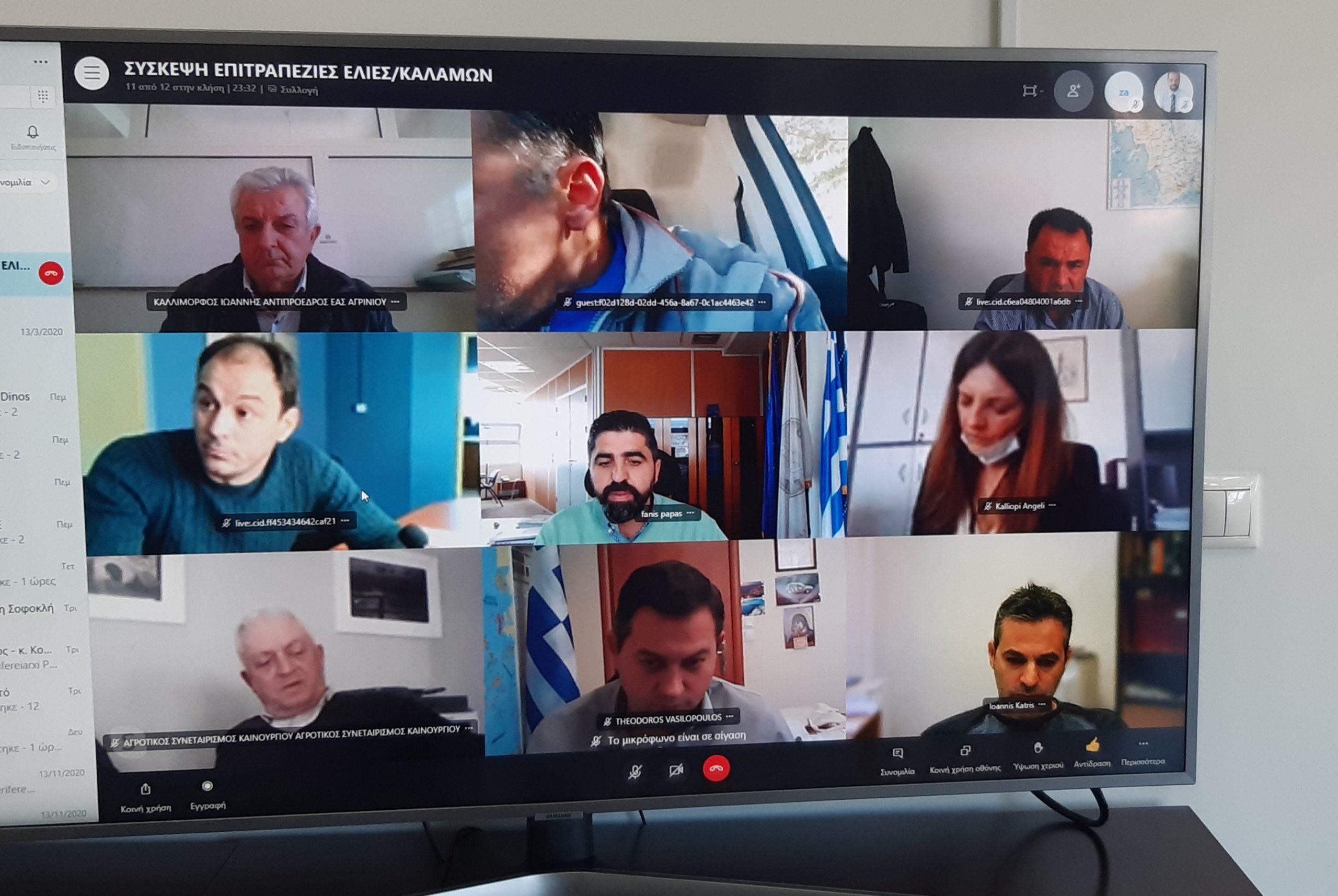 Τηλεδιάσκεψη της Περιφέρειας Δυτικής Ελλάδας με τη συμμετοχή του ΟΠΕΚΕΠΕ για τους παραγωγούς της ποικιλίας ελιάς καλαμών