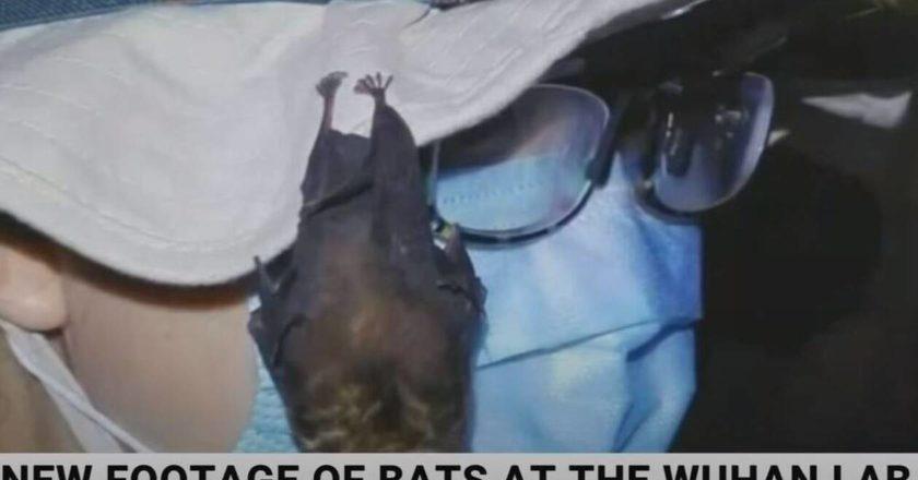 ανθρωπος με νυχτεριδα διπλα του